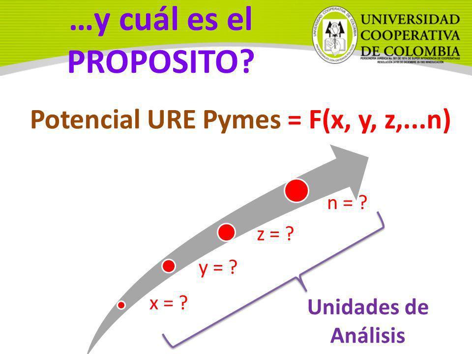 x = ? y = ? z = ? n = ? Potencial URE Pymes = F(x, y, z,...n) Unidades de Análisis …y cuál es el PROPOSITO?