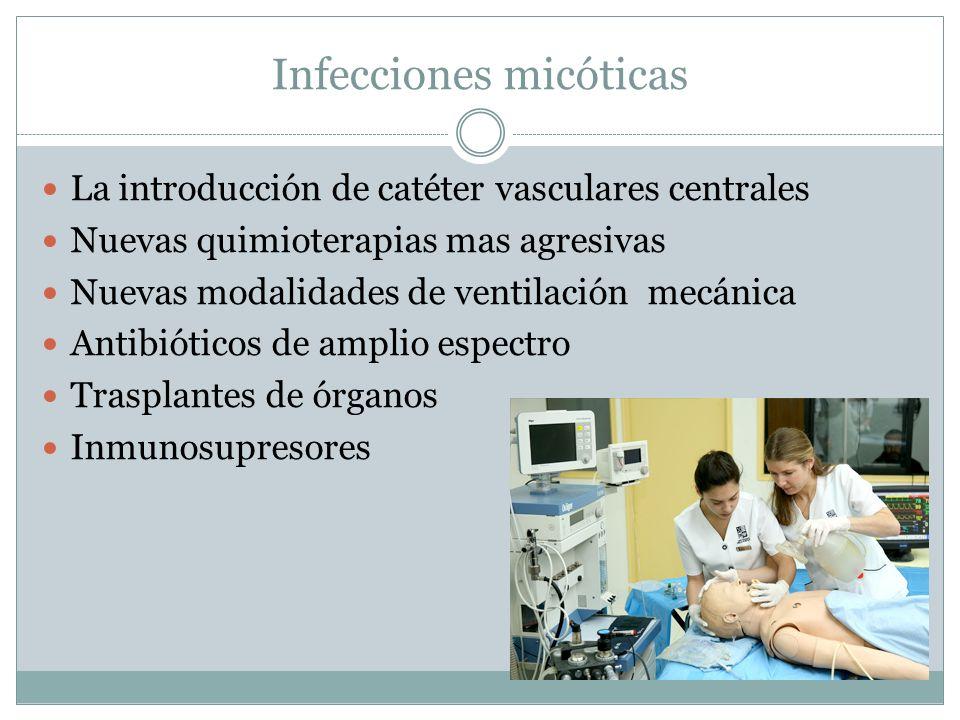 Infecciones micóticas La introducción de catéter vasculares centrales Nuevas quimioterapias mas agresivas Nuevas modalidades de ventilación mecánica A