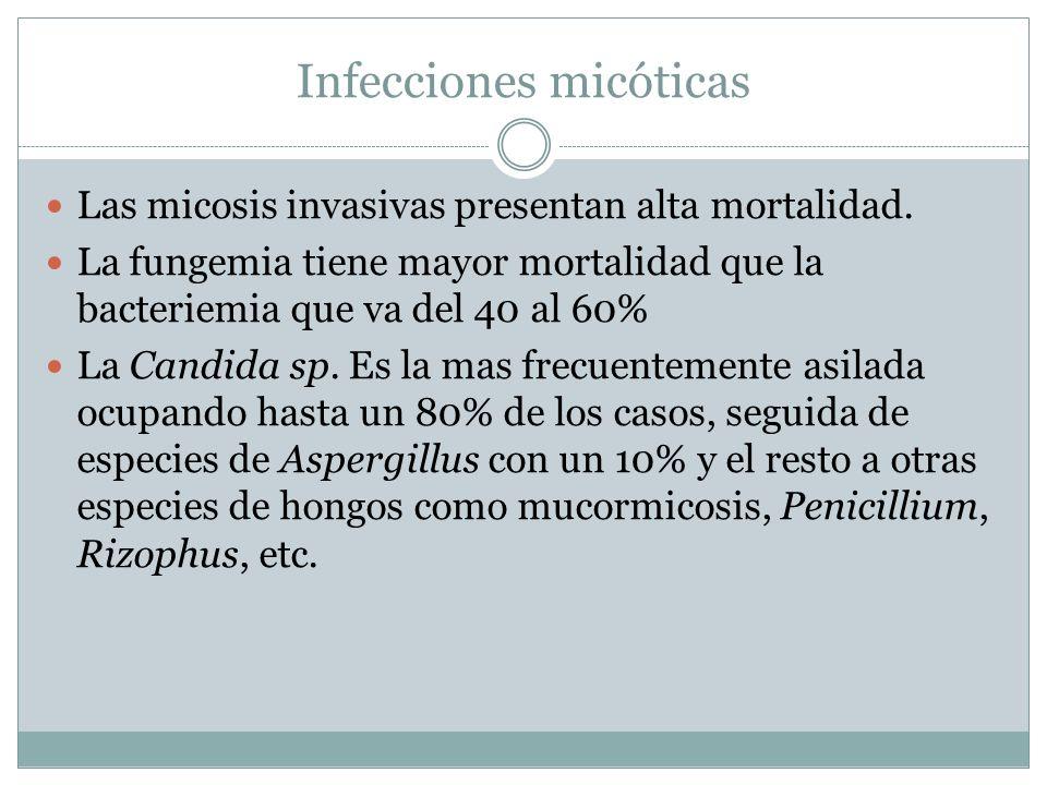 Infecciones micóticas Las micosis invasivas presentan alta mortalidad. La fungemia tiene mayor mortalidad que la bacteriemia que va del 40 al 60% La C