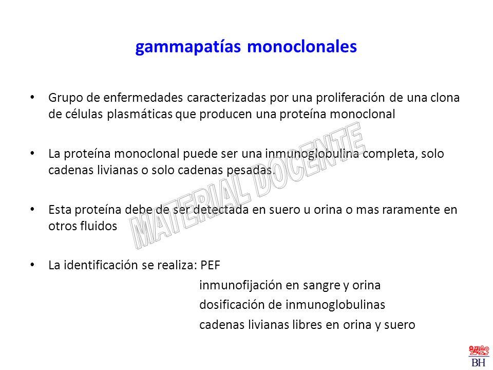 gammapatías monoclonales Grupo de enfermedades caracterizadas por una proliferación de una clona de células plasmáticas que producen una proteína mono