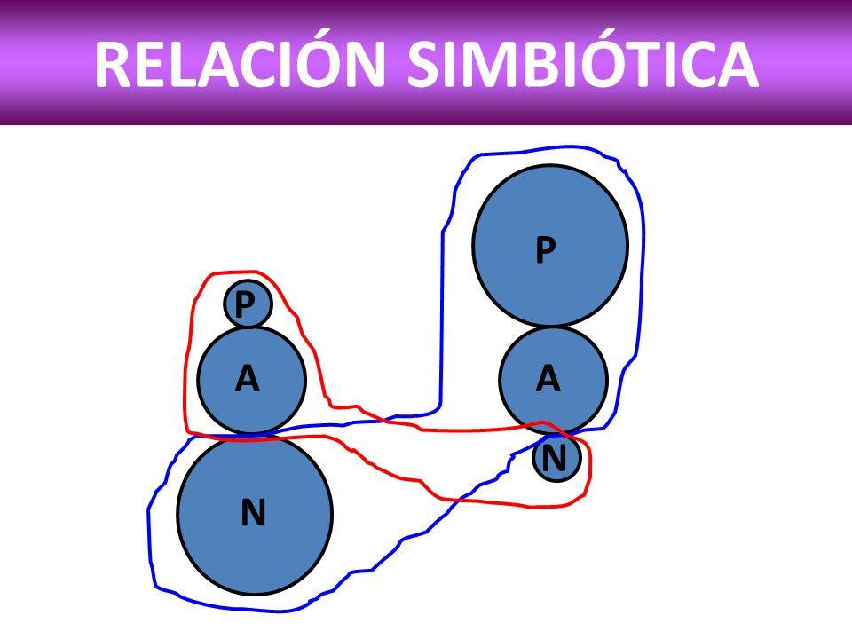 SÍNDROME DE ABSTENCIA SIMBIÓTICA FASES DE LA PRIVACIÓN SIMBIÓTICA 1.