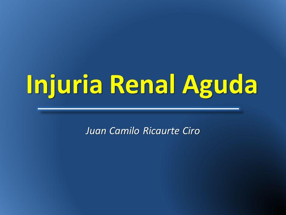 Injuria Renal Aguda Juan Camilo Ricaurte Ciro