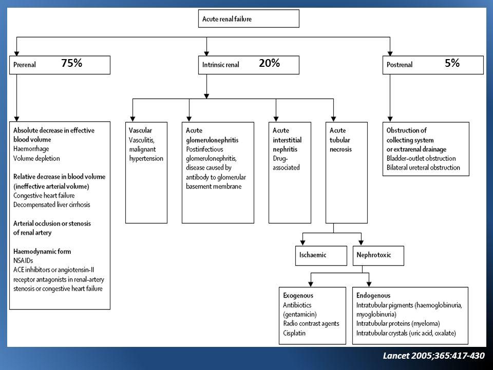 Biopsia Renal IRA causa desconocida GlomerulonefritisVasculitis Autoinmunes Nefritis intersticial alérgica NTA que no recupera luego de 4-6 semanas American Journal of Kidney Diseases 2005;45(3):614-618