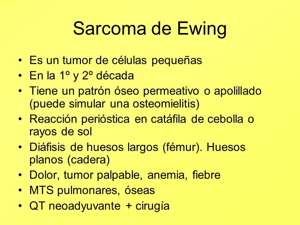 Sarcoma de Ewing Es un tumor de células pequeñas En la 1º y 2º década Tiene un patrón óseo permeativo o apolillado (puede simular una osteomielitis) R