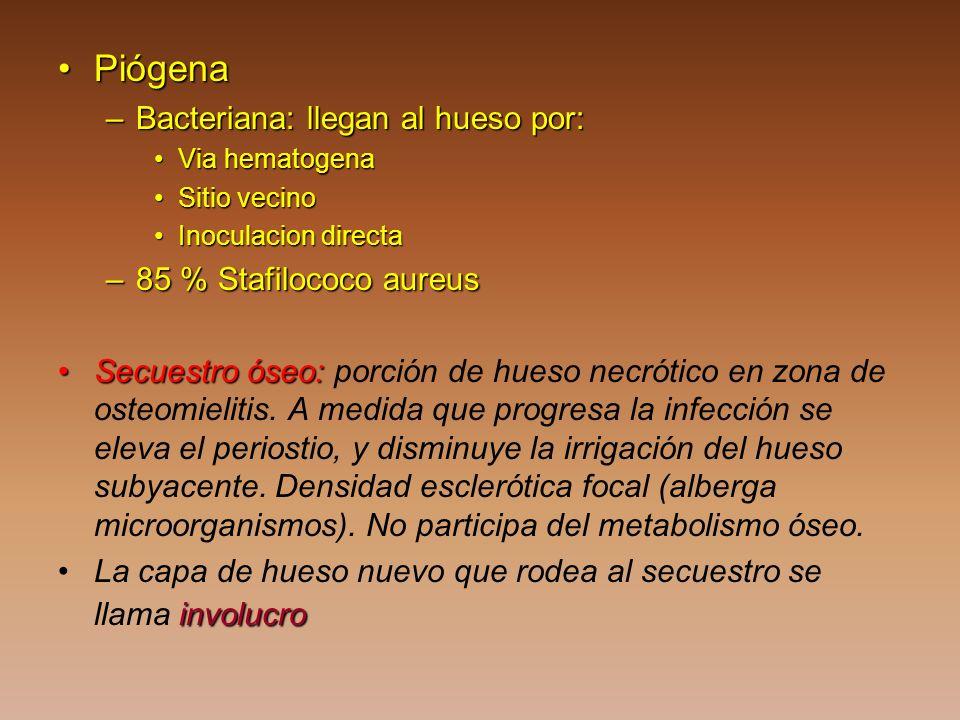 PiógenaPiógena –Bacteriana: llegan al hueso por: Via hematogenaVia hematogena Sitio vecinoSitio vecino Inoculacion directaInoculacion directa –85 % St