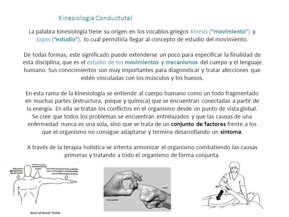 La palabra kinesiología tiene su origen en los vocablos griegos kínesis (movimiento) y logos (estudio), lo cual permitiría llegar al concepto de estud