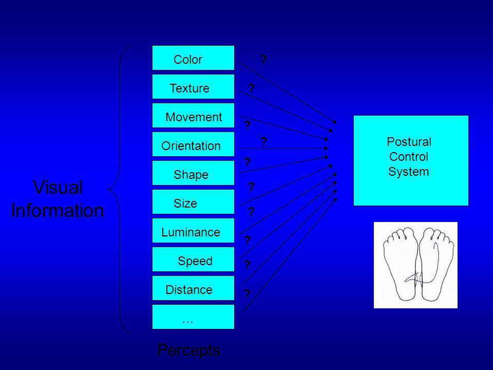 Visual Information Color TextureMovementOrientationShapeSizeLuminanceSpeedDistance ? ? ? ? ? ? ? ? ? … ? Postural Control System Percepts