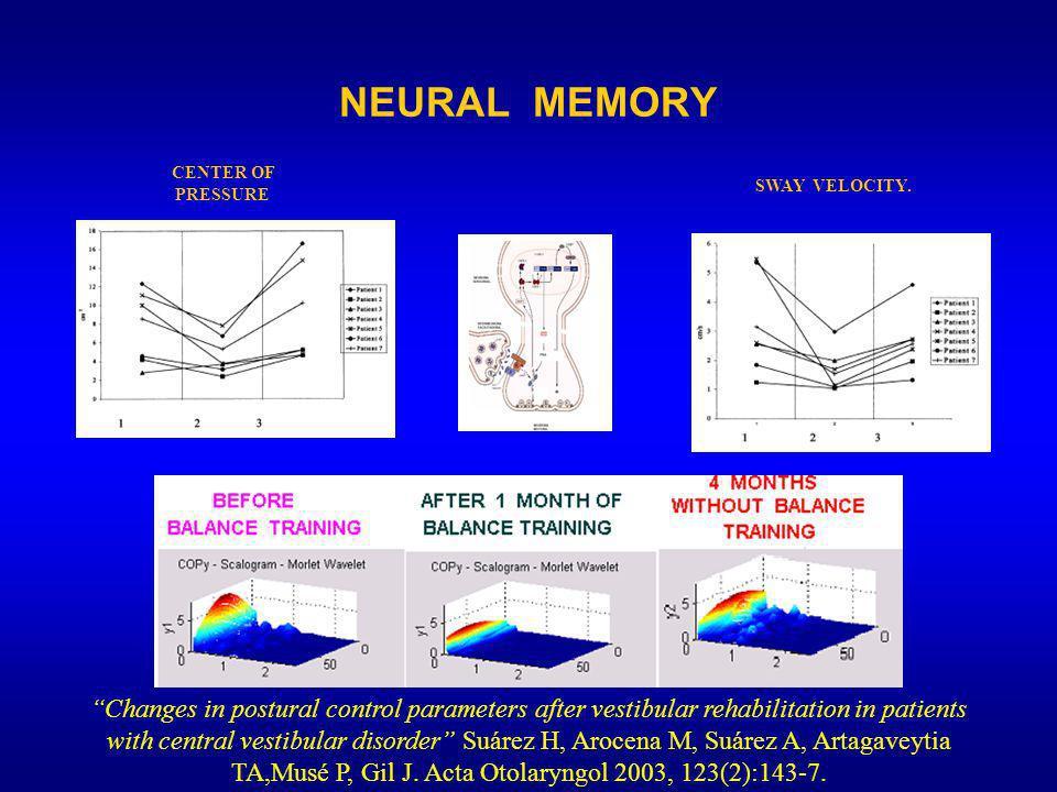 NEURAL MEMORY Changes in postural control parameters after vestibular rehabilitation in patients with central vestibular disorder Suárez H, Arocena M, Suárez A, Artagaveytia TA,Musé P, Gil J.