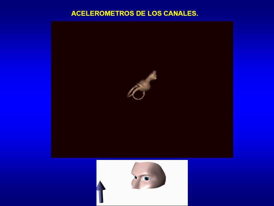 ACELEROMETROS DE LOS CANALES.
