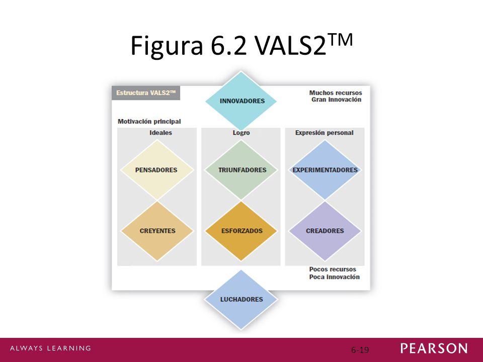 6-19 Figura 6.2 VALS2 TM