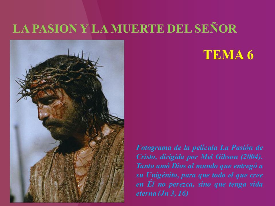 LA PASION Y LA MUERTE DEL SEÑOR TEMA 6 Fotograma de la película La Pasión de Cristo, dirigida por Mel Gibson (2004).