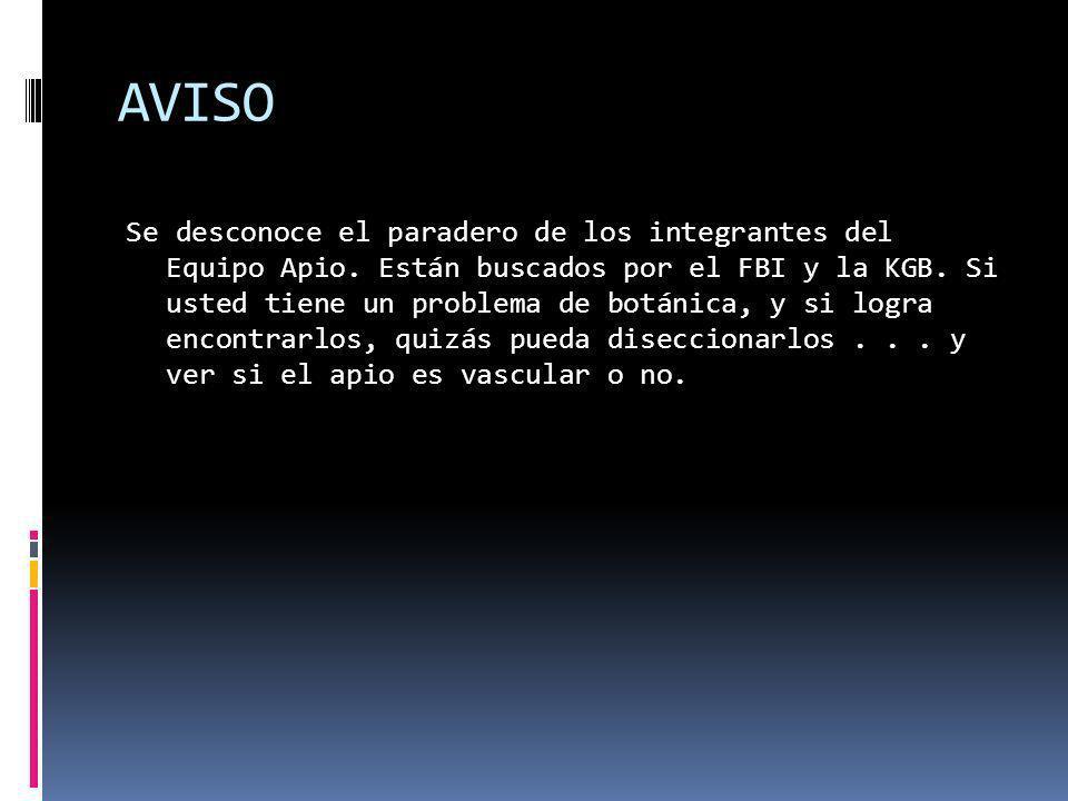 AVISO Se desconoce el paradero de los integrantes del Equipo Apio.
