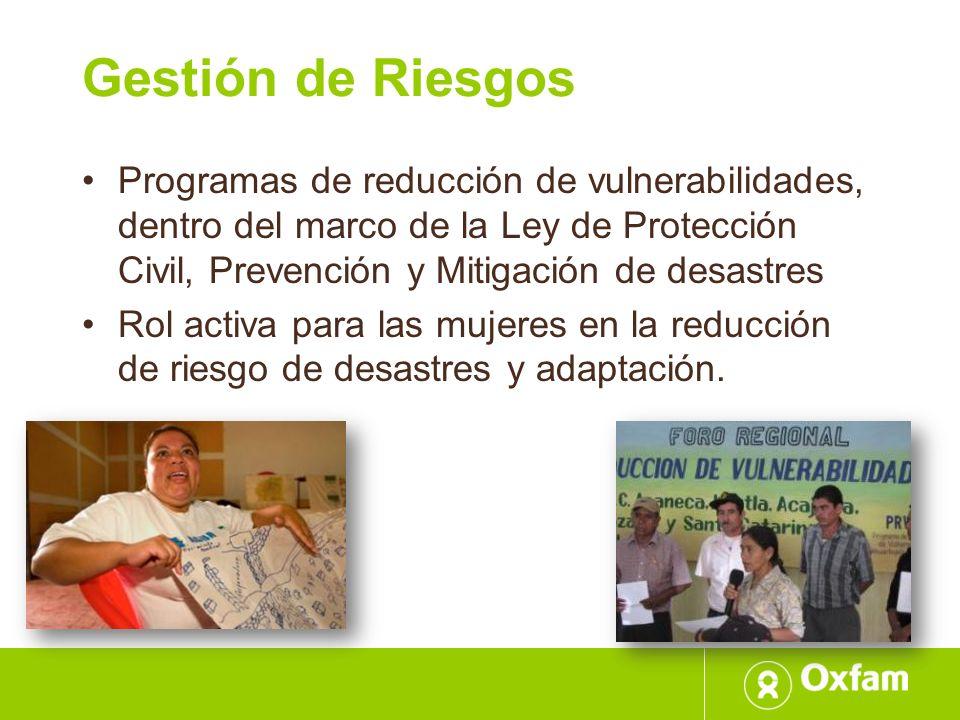 Gestión de Riesgos Programas de reducción de vulnerabilidades, dentro del marco de la Ley de Protección Civil, Prevención y Mitigación de desastres Ro