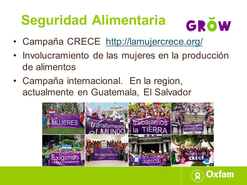 Seguridad Alimentaria Campaña CRECE http://lamujercrece.org/http://lamujercrece.org/ Involucramiento de las mujeres en la producción de alimentos Camp