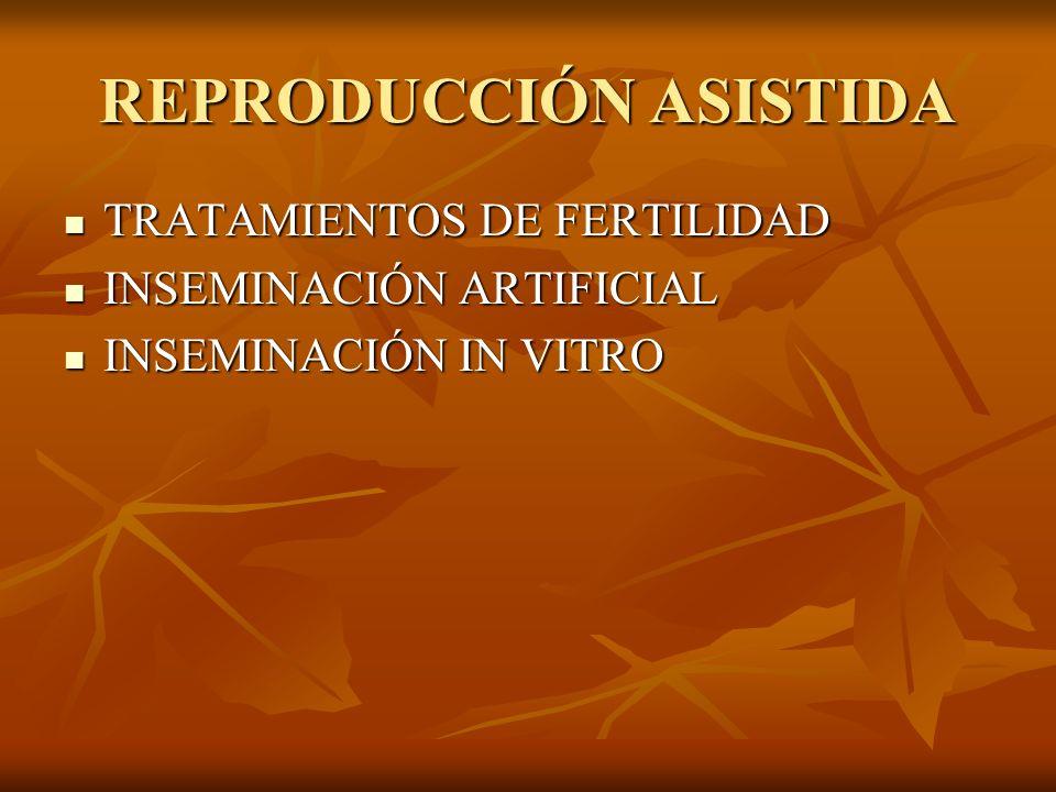 REPRODUCCIÓN ASISTIDA TRATAMIENTOS DE FERTILIDAD TRATAMIENTOS DE FERTILIDAD INSEMINACIÓN ARTIFICIAL INSEMINACIÓN ARTIFICIAL INSEMINACIÓN IN VITRO INSE