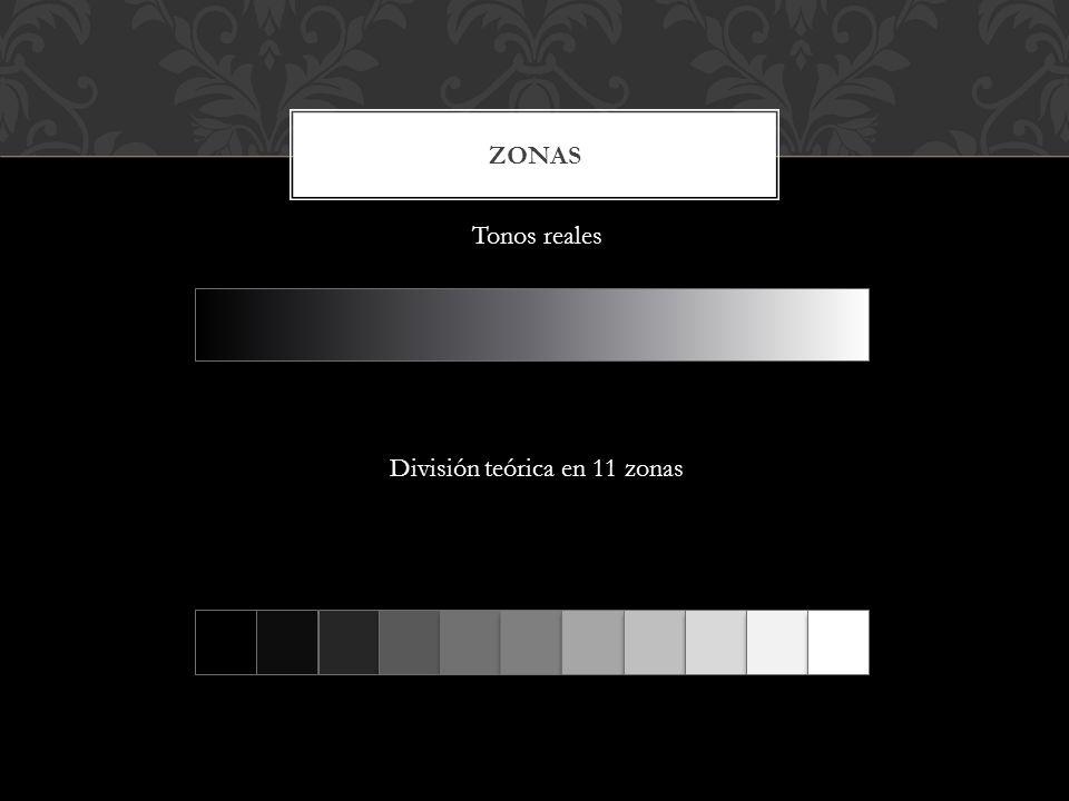 ZONAS División teórica en 11 zonas Tonos reales