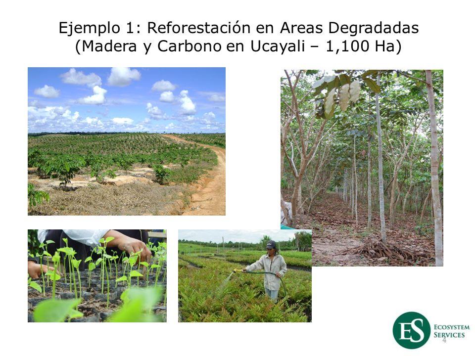 4 Ejemplo 1: Reforestación en Areas Degradadas (Madera y Carbono en Ucayali – 1,100 Ha)