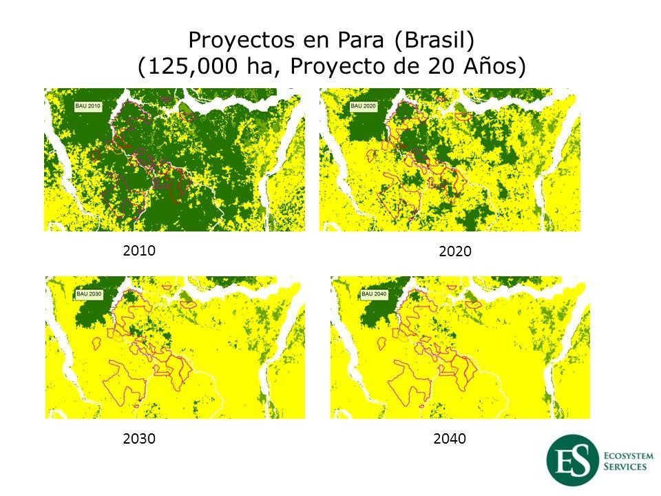 Proyectos en Para (Brasil) (125,000 ha, Proyecto de 20 Años) 2010 2020 20302040