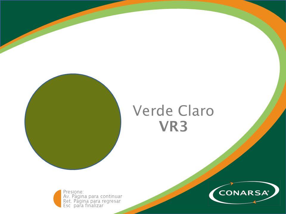 Av. Página para continuar Ret. Página para regresar Esc para finalizar Presione: Verde Claro VR3