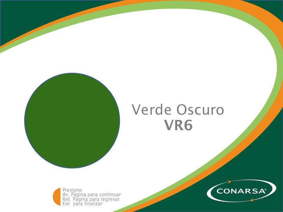 Av. Página para continuar Ret. Página para regresar Esc para finalizar Presione: Verde Oscuro VR6