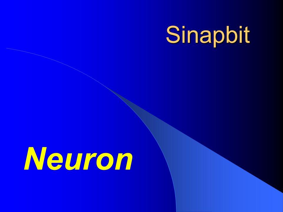 Sinapbit Neuron