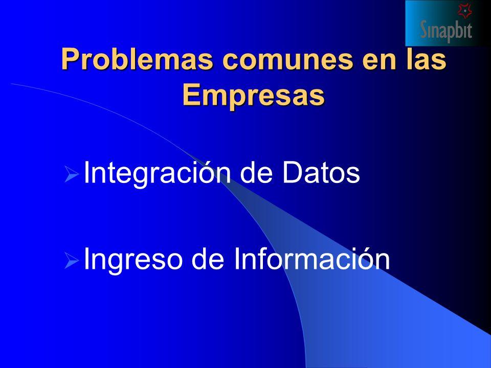 Problemas comunes en las Empresas Integración de Datos Ingreso de Información