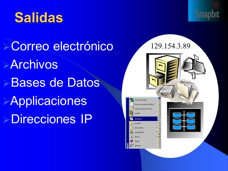 Salidas 129.154.3.89 Correo electrónico Archivos Bases de Datos Applicaciones Direcciones IP