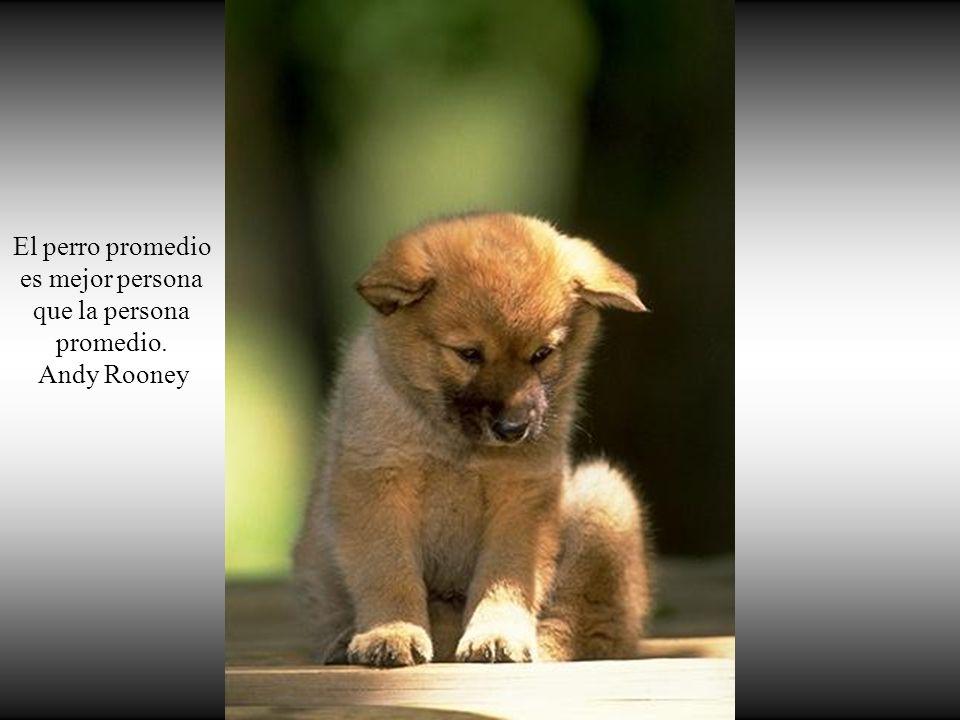 Si los perros no van al cielo, cuando muera quiero ir a donde ellos van. Will Rogers
