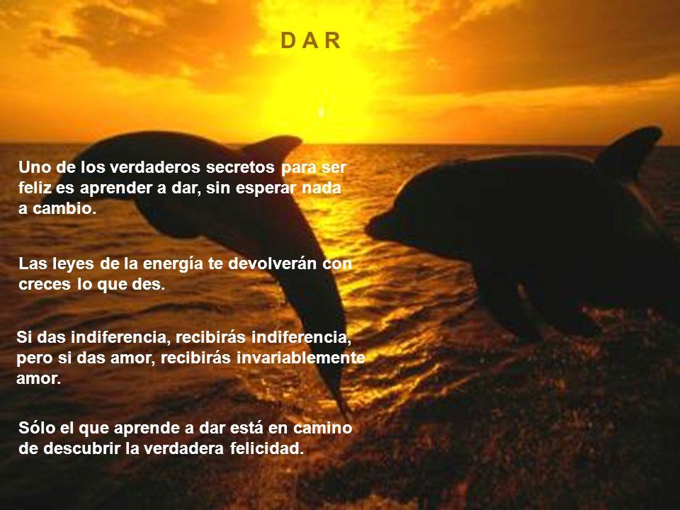 D A R Uno de los verdaderos secretos para ser feliz es aprender a dar, sin esperar nada a cambio.