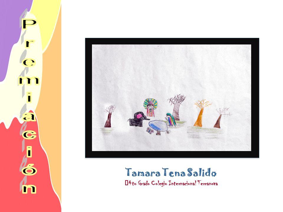 Tamara Tena Salido 4to Grado Colegio Internacional Terranova