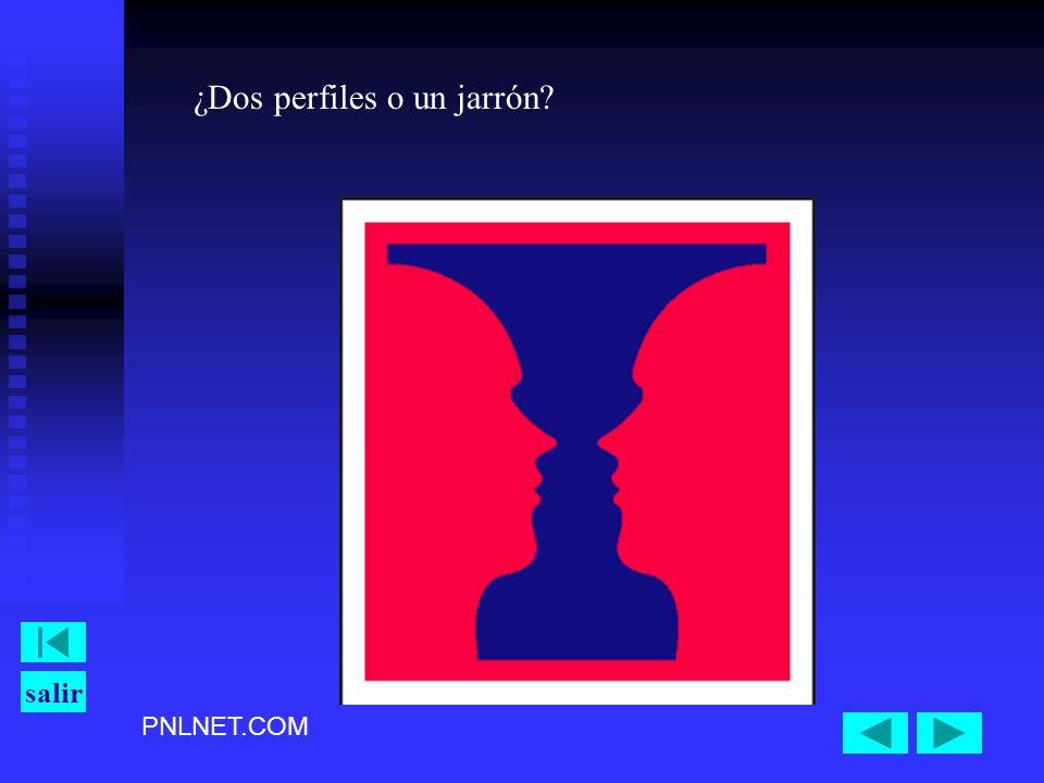 PNLNET.COM salir ¿Dos perfiles o un jarrón?