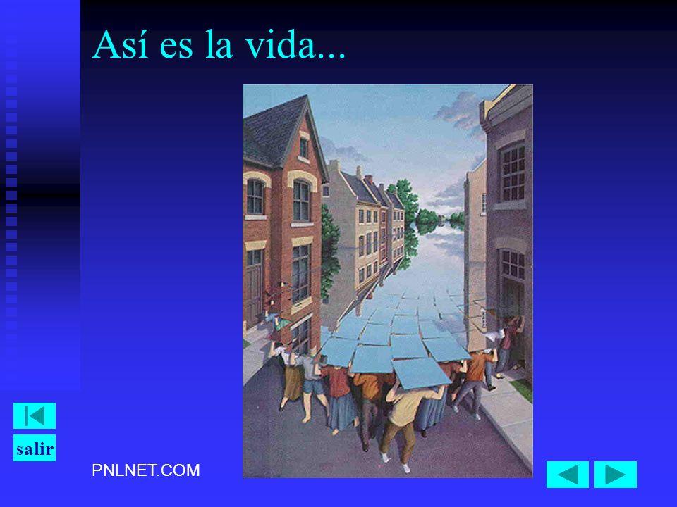 PNLNET.COM salir Así es la vida...