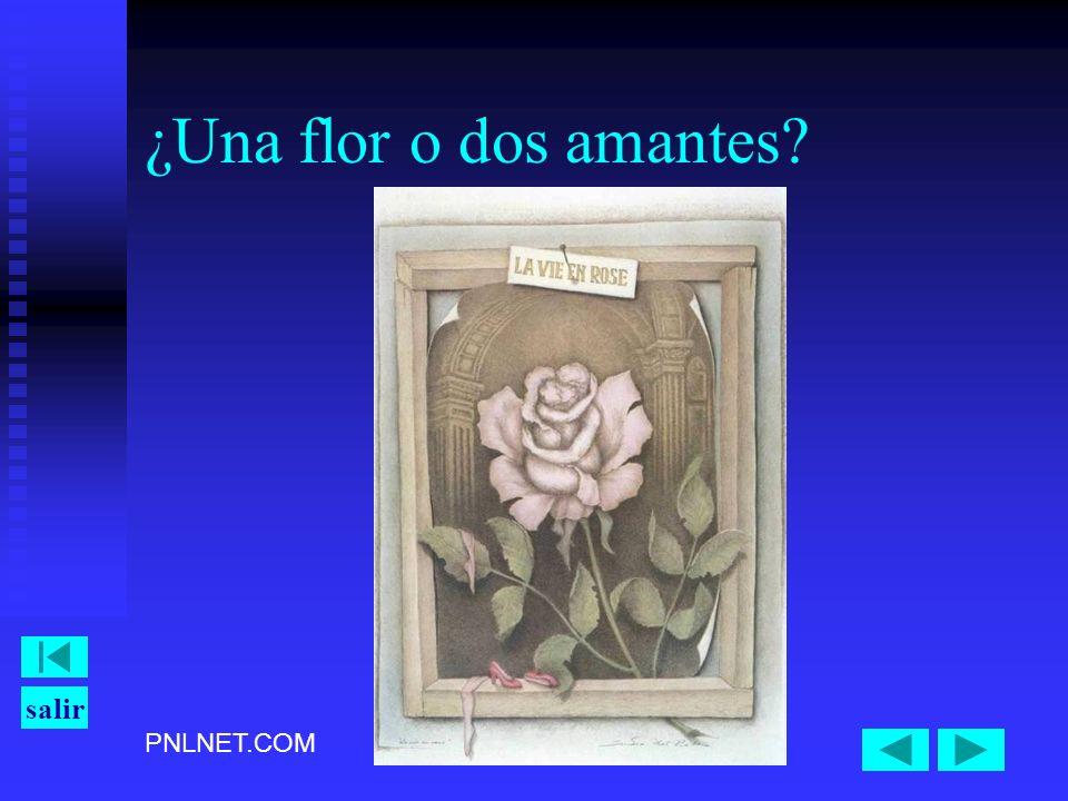 PNLNET.COM salir ¿Una flor o dos amantes?