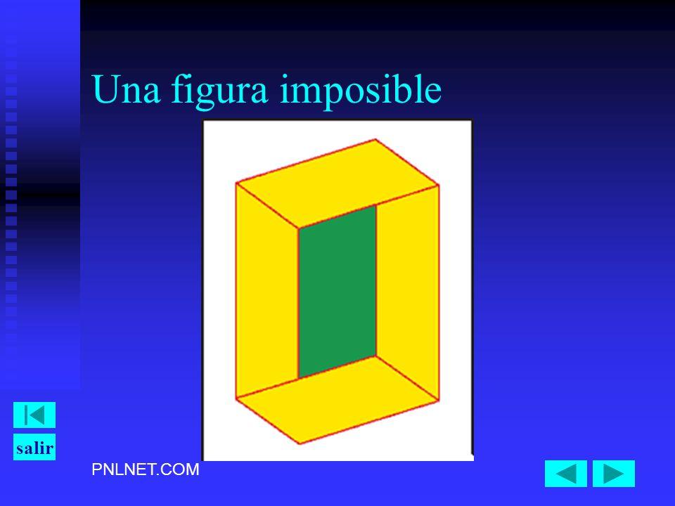 PNLNET.COM salir Una figura imposible