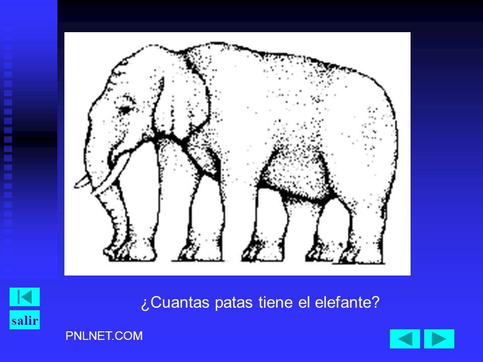 PNLNET.COM salir ¿Cuantas patas tiene el elefante?
