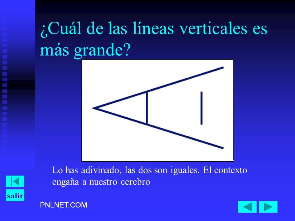 PNLNET.COM salir ¿Cuál de las líneas verticales es más grande? Lo has adivinado, las dos son iguales. El contexto engaña a nuestro cerebro