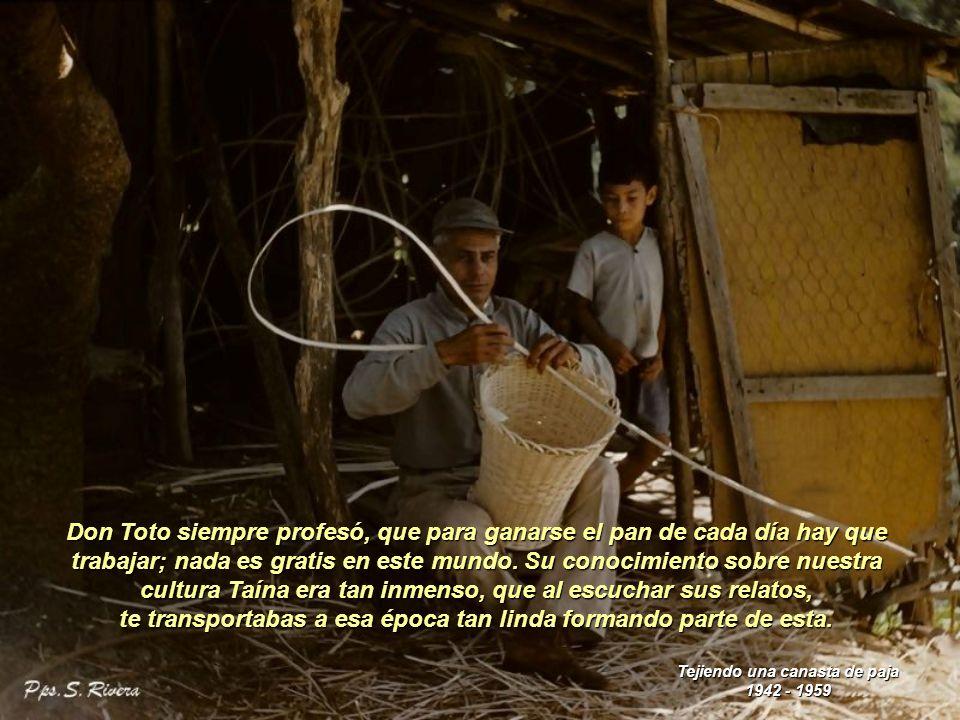 Don Toto se entretenía fabricando utensilios para la casa hechos con cocos, como las coqueras para tomar café, higüeras para las maracas, hoyas, y cucharas para sacar el pegao.