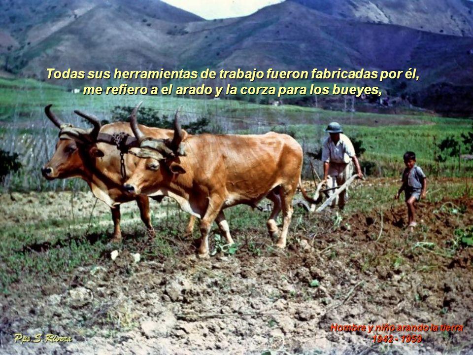 Todas sus herramientas de trabajo fueron fabricadas por él, me refiero a el arado y la corza para los bueyes, Hombre y niño arando la tierra 1942 - 1959