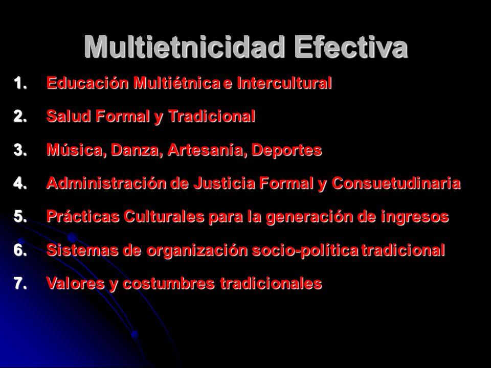 Multietnicidad Efectiva 1.Educación Multiétnica e Intercultural 2.Salud Formal y Tradicional 3.Música, Danza, Artesanía, Deportes 4.Administración de
