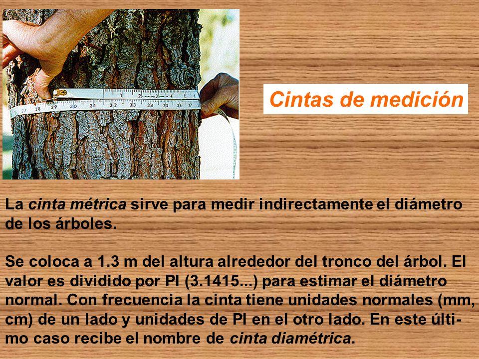 Cintas de medición La cinta métrica sirve para medir indirectamente el diámetro de los árboles. Se coloca a 1.3 m del altura alrededor del tronco del