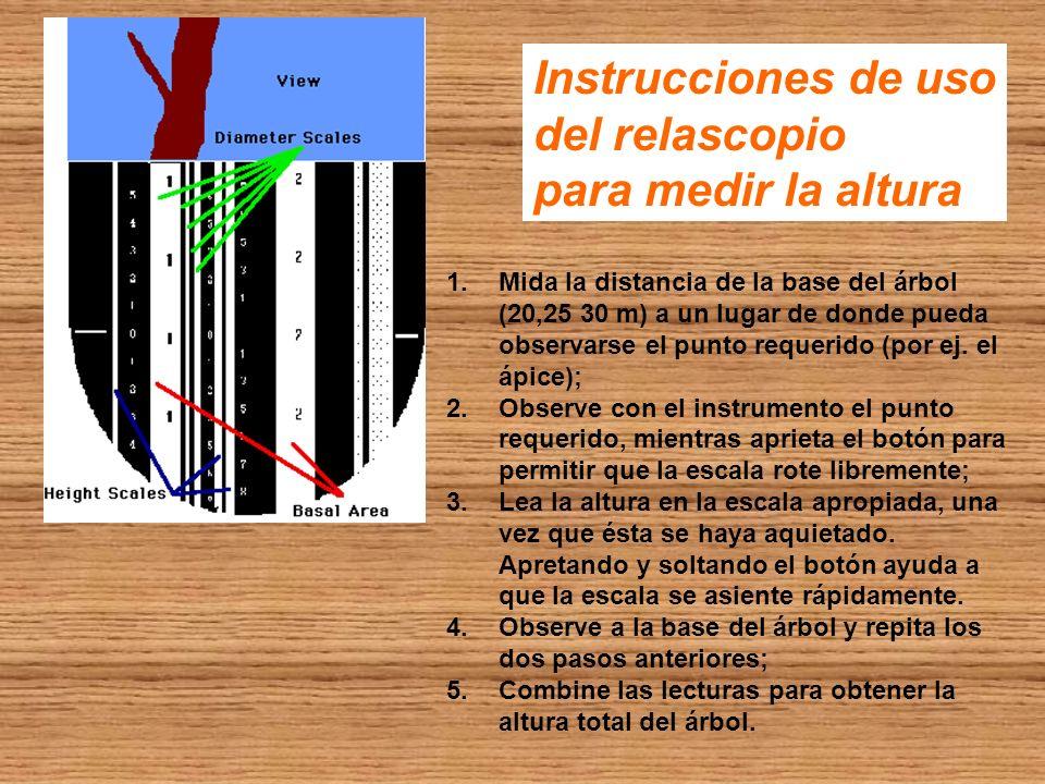 Instrucciones de uso del relascopio para medir la altura 1.Mida la distancia de la base del árbol (20,25 30 m) a un lugar de donde pueda observarse el