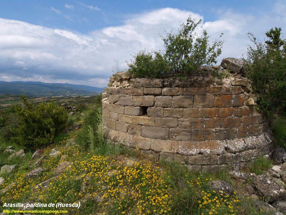 Arasilla, pardina de (Huesca ) http://www.romanicoaragones.com