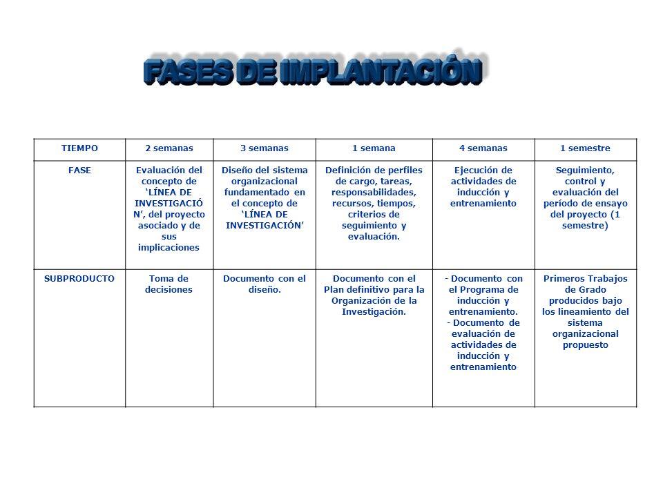 TIEMPO2 semanas3 semanas1 semana4 semanas1 semestre FASEEvaluación del concepto de LÍNEA DE INVESTIGACIÓ N, del proyecto asociado y de sus implicaciones Diseño del sistema organizacional fundamentado en el concepto de LÍNEA DE INVESTIGACIÓN Definición de perfiles de cargo, tareas, responsabilidades, recursos, tiempos, criterios de seguimiento y evaluación.