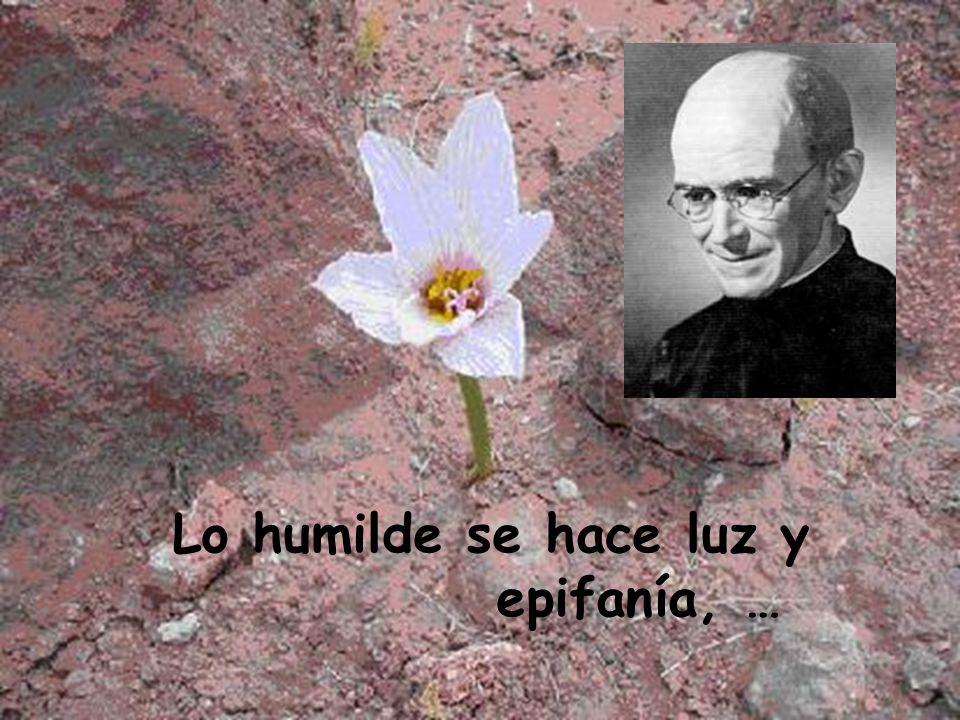 Vida Del Hno. Beato Francisco De Gárate S.J. conjuga tu silencio en poesía.