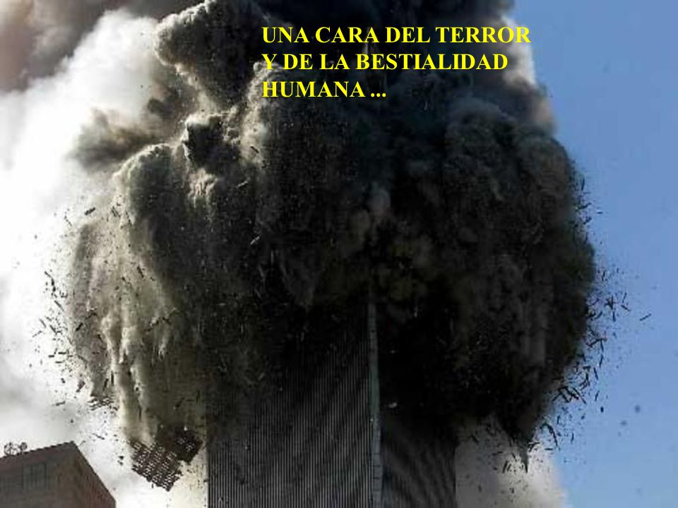 UNA CARA DEL TERROR Y DE LA BESTIALIDAD HUMANA...