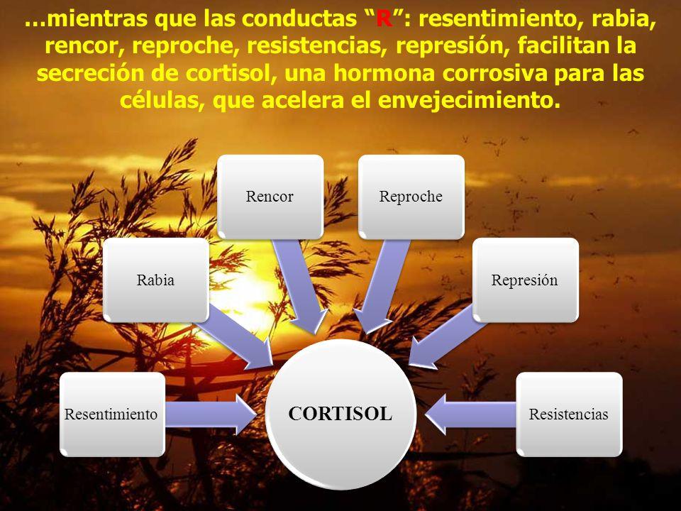 Las conductas S : serenidad, silencio, sabiduría, sabor, sexo, sueño, sonrisa, promueven secreción de Serotonina, que inhiben el enojo, la agresión SE