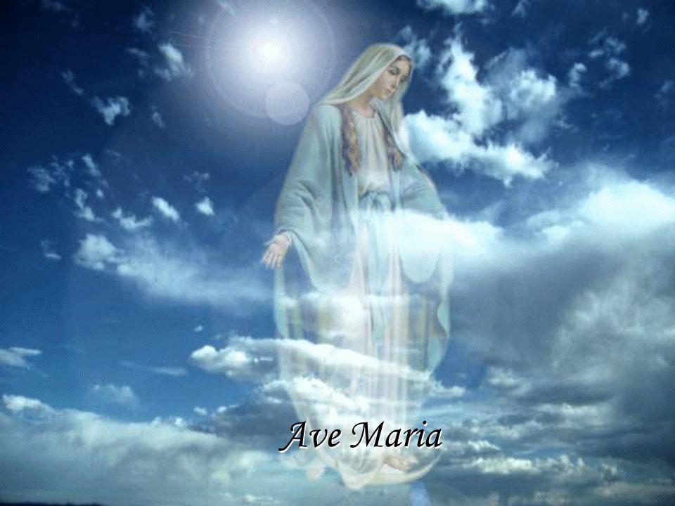 Ave Maria escúchame, Ave Maria te pido que no termine nuestro amor Ave Maria escúchame, Ave Maria Ave Maria te pido que no termine nuestro amor