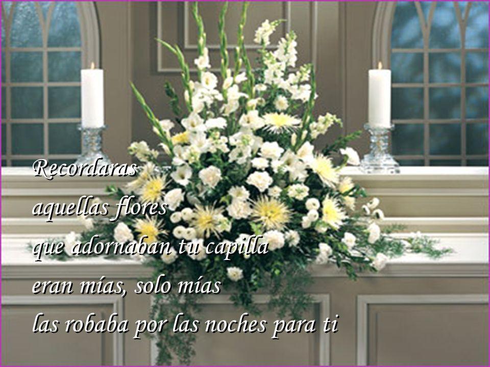 Recordaras aquellas flores que adornaban tu capilla eran mías, solo mías las robaba por las noches para ti Recordaras aquellas flores que adornaban tu capilla eran mías, solo mías las robaba por las noches para ti