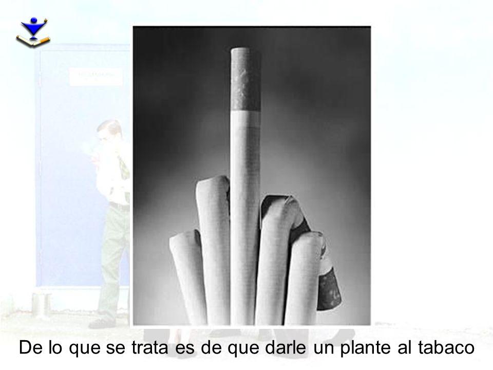 De lo que se trata es de que darle un plante al tabaco