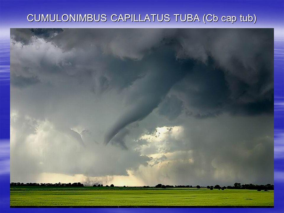 CUMULONIMBUS CAPILLATUS TUBA (Cb cap tub) Nube con una forma de columna o de cono invertido que emerge de la base de una nube; constituye la manifesta